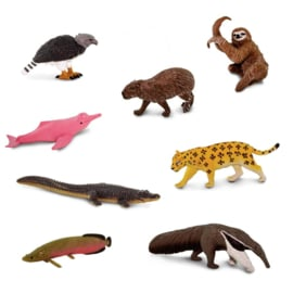 Zuid Amerika wildlife S100684