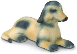Afghaanse windhond puppy CollectA 88174