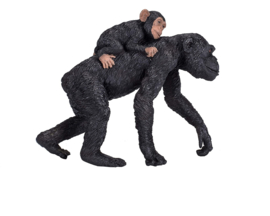 Chimpansee met jong  Mojo 387264
