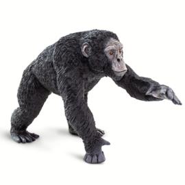 Chimpansee   XXL   S100302