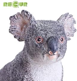 Koala Recur