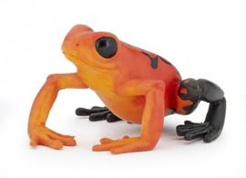 Oranje Equatoriale kikker Papo 50193