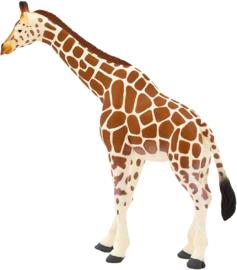 Giraffe Mojo 387006