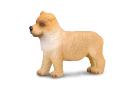 Chow Chow puppy  CollectA 88184