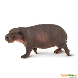 Dwergnijlpaard  S229229