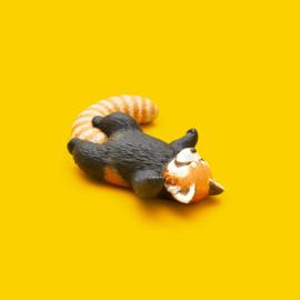 Kleine Panda   ZZZ