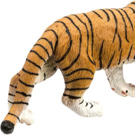 Bengaalse tijger  S270829