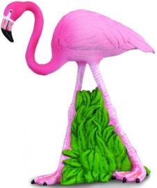 Flamingo  CollectA88207
