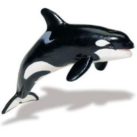 Orca S100232