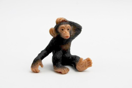 Chimpansee jong 63686