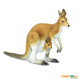 Kangeroe met Joey  S100108