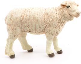 Merino schaap 51041