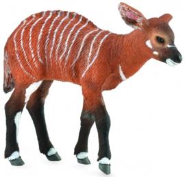 Bongo antilope kalf   CollectA 88823