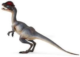 Dilophosaurus Safari 287829