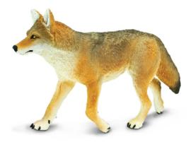 Coyote   XXL   S113089