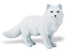 Arctic Fox  S282329