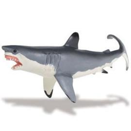 Witte haai  (Serie Monterey Bay Aquarium) S211202