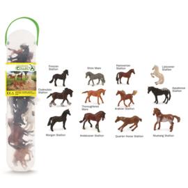 PAARDEN   set met 12 paarden