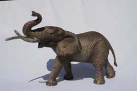 Olifant Afrikaans Schleich 14762