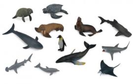ZEEDIEREN   set A met 12 dieren