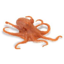 Octopus  (rood)   S274429