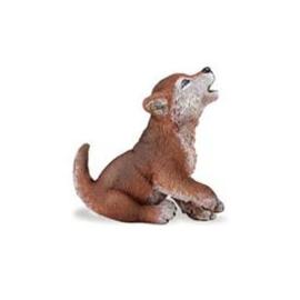 Grijze wolf  pup  S222929
