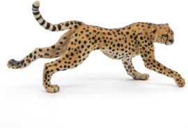 Cheetah Papo 50238