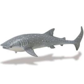 Walvishaai (serie Monterey Bay Aquarium)  S210602