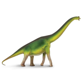 Brachiosaurus Safari 300229