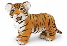 Bengaalse tijger jong  S294929