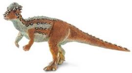 Pachycephalosaurus   S100350