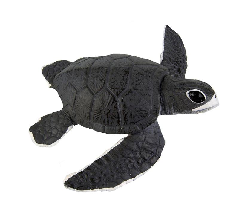 Zeeschildpad jong   S268129
