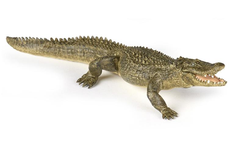 Alligator Papo 50254   met beweegbare bovenkaak
