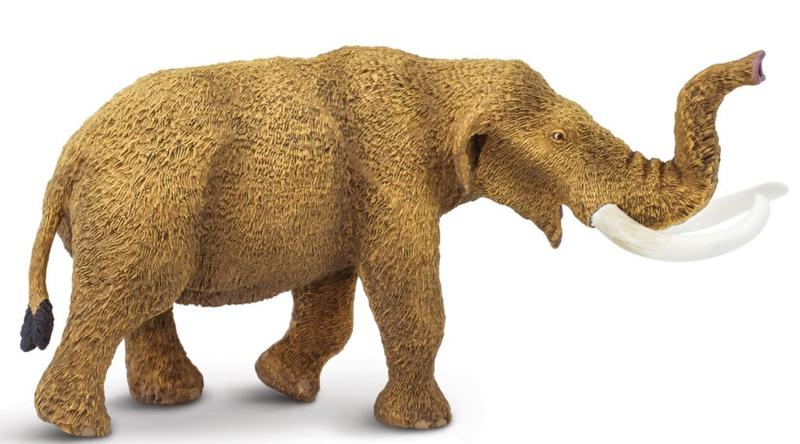 Mastodon  S100081