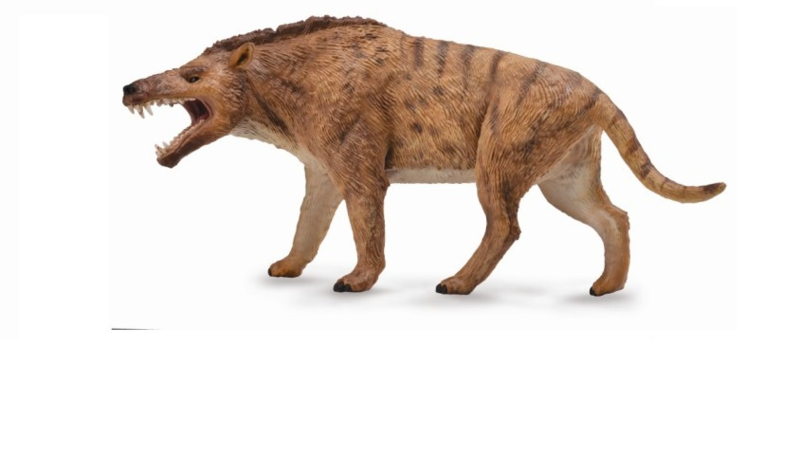 Andrewsarchus  CollectA 88772