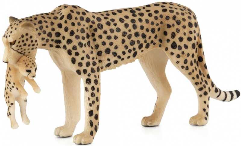 Cheetah met jong  Mojo 387167
