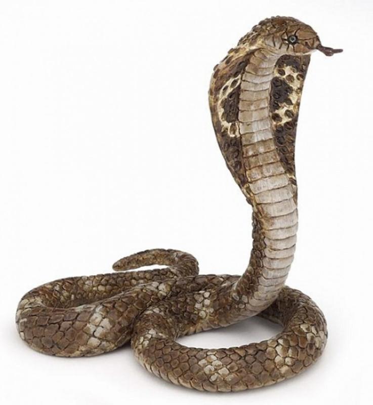 Cobra slang  Papo 50164