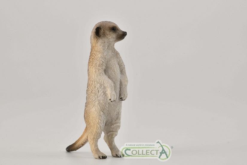 collecta 2021 meerkat