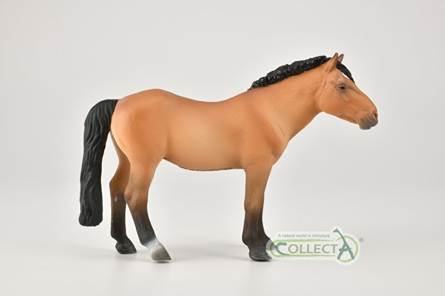 The Mongolian Horse collecta 2021
