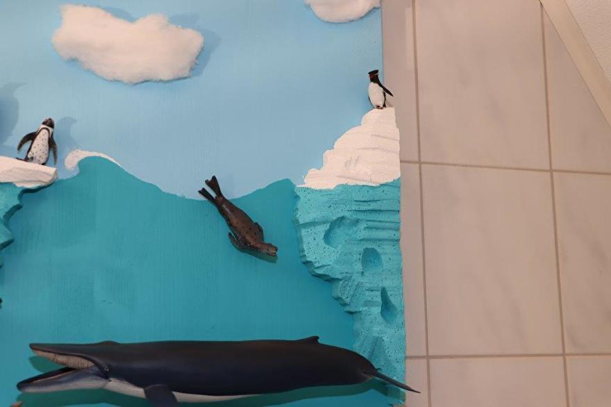 Pinguïns collecta