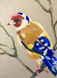 Goldfinch Fever