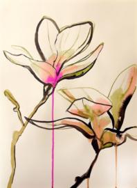 Magnolia Lines