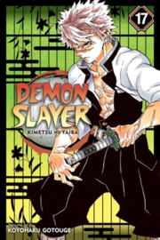 Demon Slayer: Kimetsu no Yaiba, Vol. 17  - sc - 2020