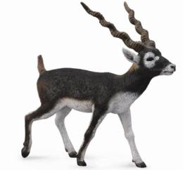 antilope zwarte bok 88638