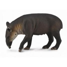 tapir 88596