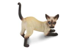 siamese kat zittend 88332