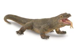 dragon de Komodo 88900