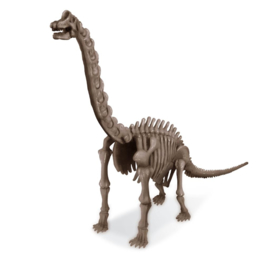 brachiosaurus 3237