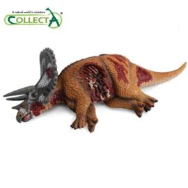 Collecta triceratops kadaver 88528