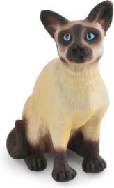 siamese kat zittend 88331